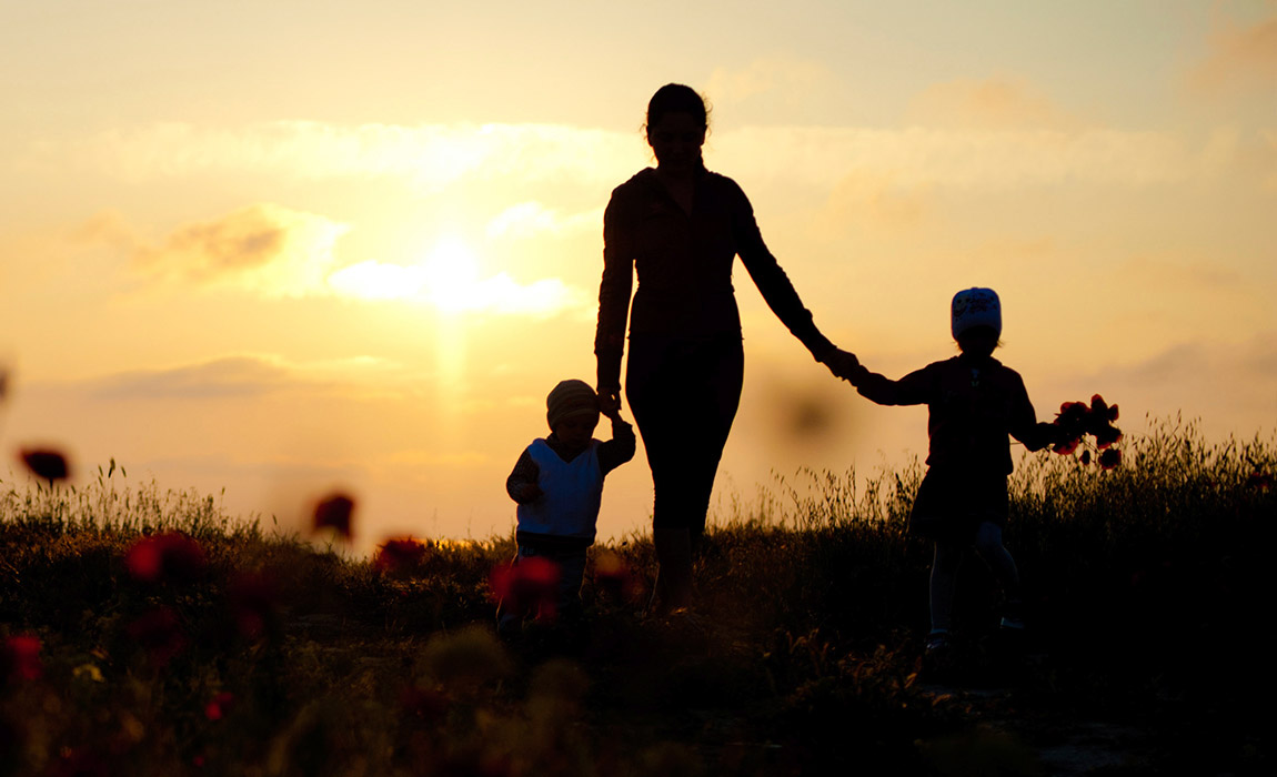 Florida Parent Education and Family Stabilization Class:Proactive Parenting and Divorce